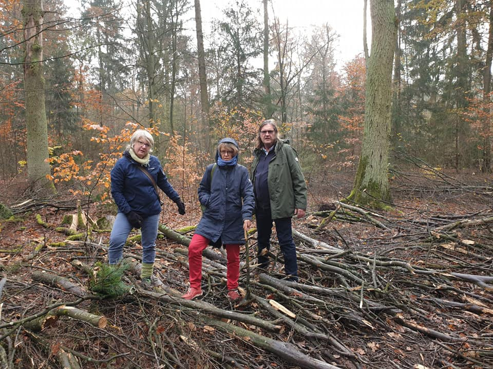 Waldbegehung: Verstöße gegen FSC-Standards