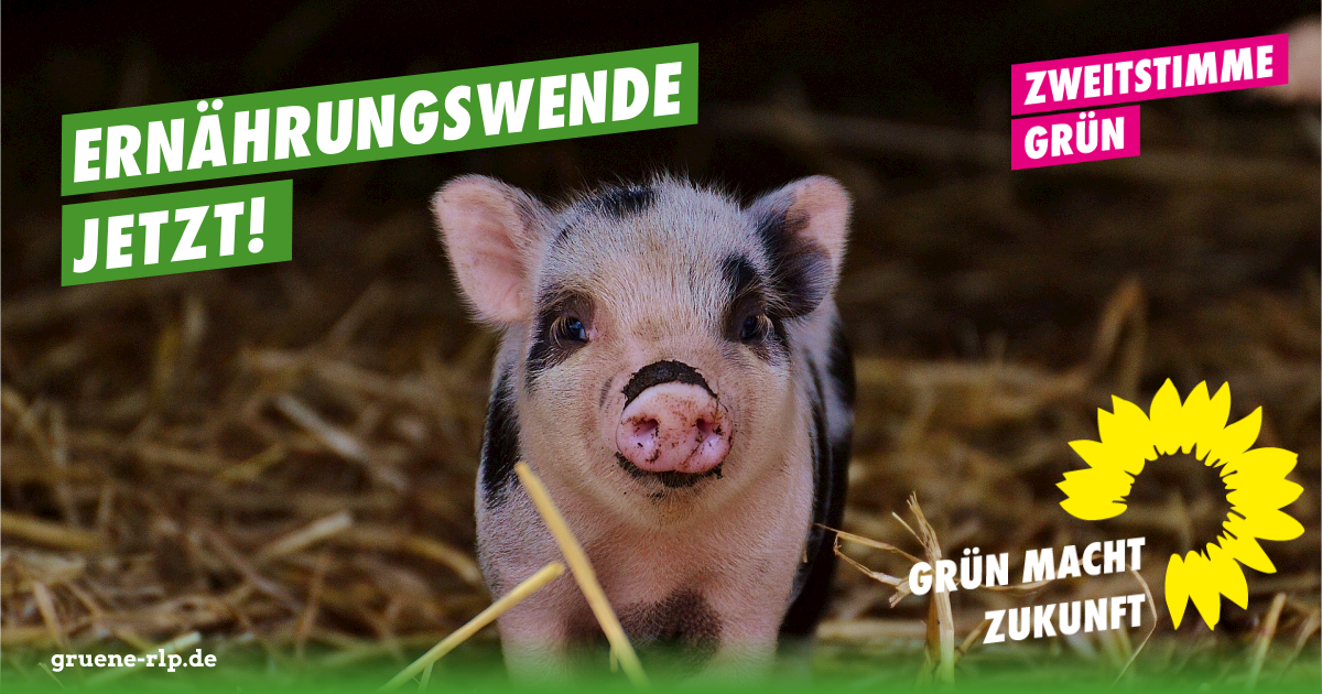 Landtagswahl 2021: Ernährungswende JETZT!