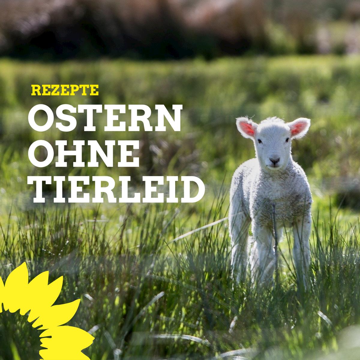 Ostern ohne Tierleid – Rezepte